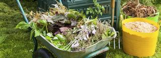 How To Get Started Composting