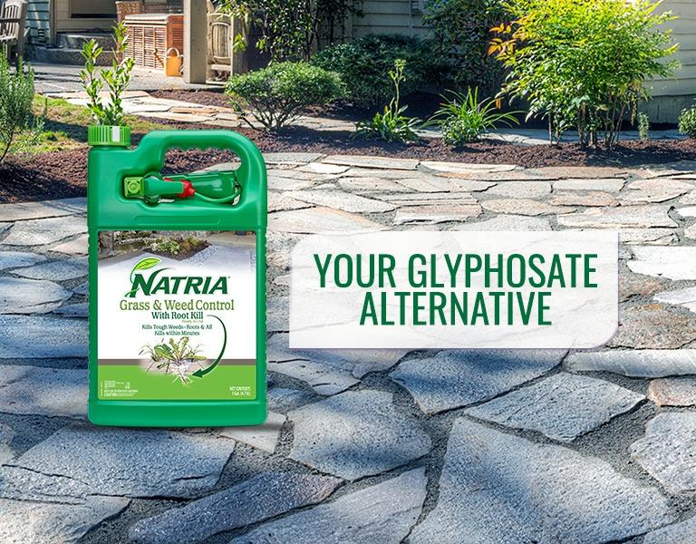 Natria Grass & Weed Killer with Root Kill - Glyphosate Alternative